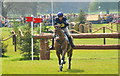 ST8182 : Badminton Horse Trials, Gloucestershire 2016 by Ray Bird