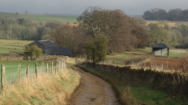 On Cotswold Way - Campden Lane leading towards Stumps Cross