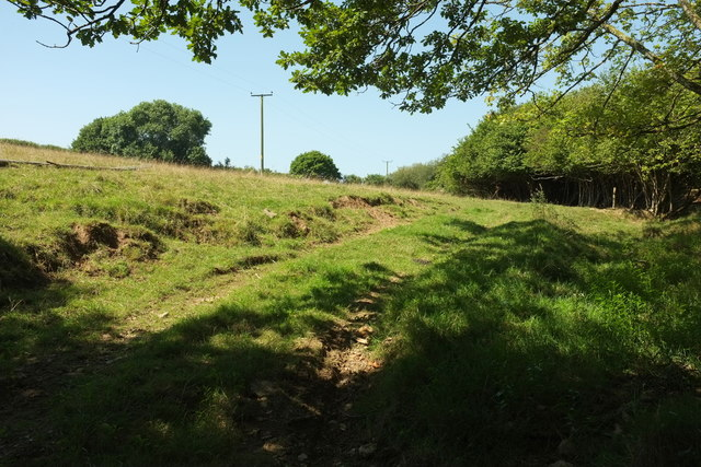 Track and field, Tawna