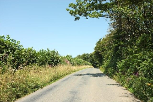 Road past Pinsla Gardens