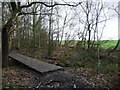 SE3214 : Boardwalk on the northern edge of Seckar Wood by Christine Johnstone