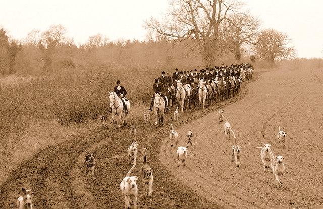Beaufort Hunt, nr Sopworth, Wiltshire 2009
