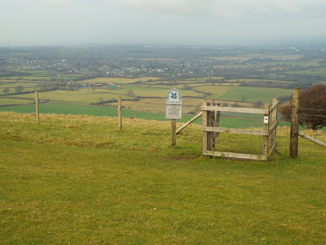 Ditchling Down