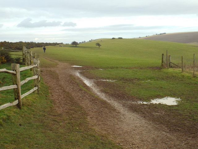 South Downs Way, near Ditchling Down