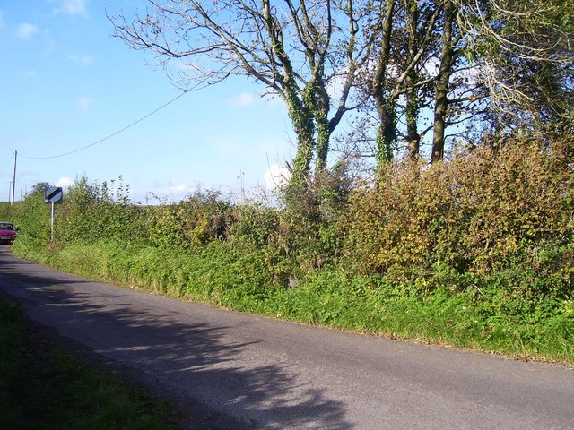Laugharne - parish boundary stone hidden in hedge