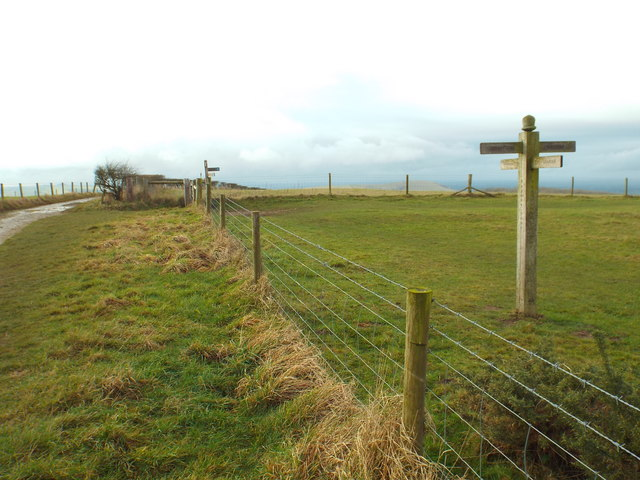 Signposts on the South Downs Way