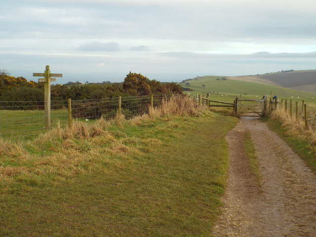 South Downs Way near Ditchling Down