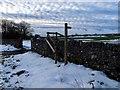 SK1165 : Step stile with hand rail near High Needham by Ian Calderwood
