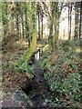 NX5956 : Stream in Garries Wood by Jon Alexander