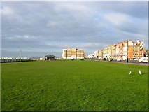 TQ2904 : King's Lawns, Hove by Simon Carey