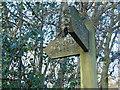 SD7313 : Waymarket at Ousels Nest by Carroll Pierce