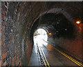 SK5801 : Tunnel on Knighton Lane East by Mat Fascione