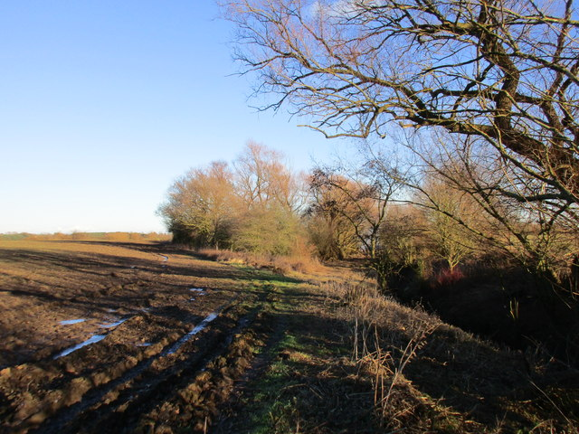 Path to the right, floodbank to the left