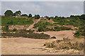 SO8270 : Hartlebury Common by Ian Capper