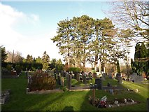TQ3355 : Caterham Cemetery: early January 2017 (h) by Basher Eyre