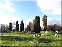 TQ3355 : Caterham Cemetery: early January 2017 (n) by Basher Eyre