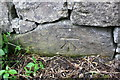 NZ1100 : Benchmark on wall beside A6108 at West Wood by Roger Templeman