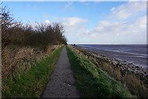TA0225 : Jean's Walk, Hessle Foreshore by Ian S