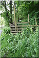 NZ1301 : Footpath to 'Under Bank'  from the A6108 by Roger Templeman