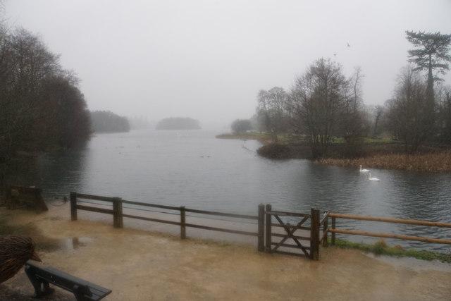 Trentham Lake