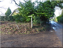 TQ2116 : Footpath junction with Furners Lane by Shazz