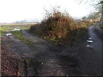 TQ2116 : Muddy track into field from Furners Lane by Shazz