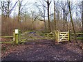 SO8060 : Gates across track, Monkwood Nature Reserve, near Monkwood Green, Worcs by P L Chadwick