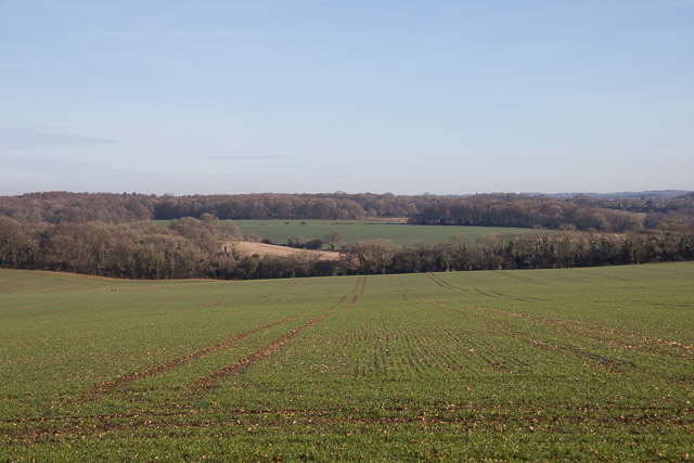 Fields on Wheely Farm