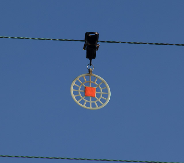 Bird diverter on 11KV overhead electricity line