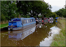 SJ5847 : Moored narrowboats near Wrenbury, Cheshire by Roger  Kidd