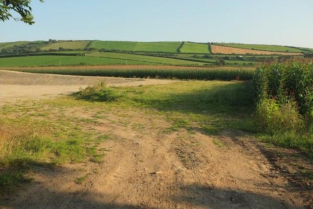 Farmland west of Treliggon