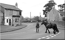 ST8080 : Fox & Hounds Pub Corner, Acton Turville, Gloucestershire 2012 by Ray Bird