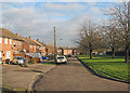 TL4859 : Ditton Lane in January by John Sutton