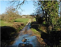 ST1504 : Fords on lane to Shapcombe Farm by Roger Cornfoot