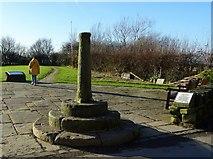 SD7513 : Affetside Cross by Philip Platt