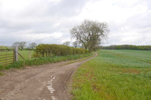 Farm road, Whinny Hill
