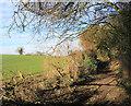 SU8289 : Beacon Lane by Des Blenkinsopp