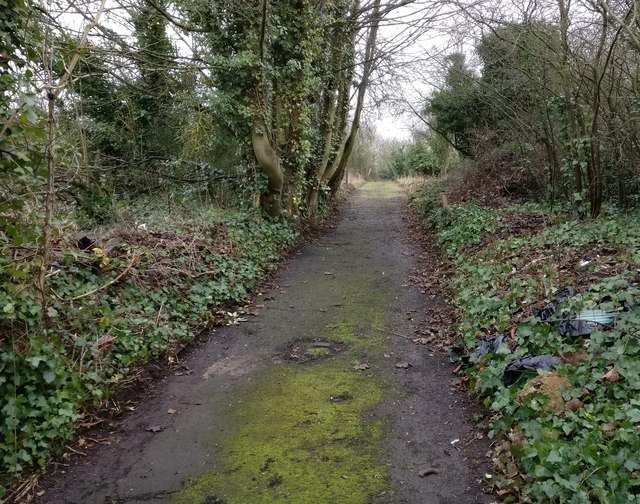 Path on the former St Mary's Allotments