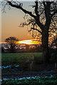 TR2741 : Sunset near St Radegunds Abbey by Ian Capper