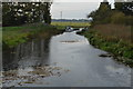 TL2471 : Cook's Stream (Great Ouse) by N Chadwick