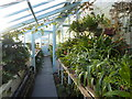TQ4361 : The greenhouses at Down House by Marathon