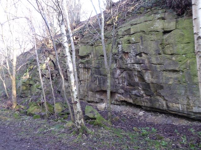 Rock face above Whittle Dene