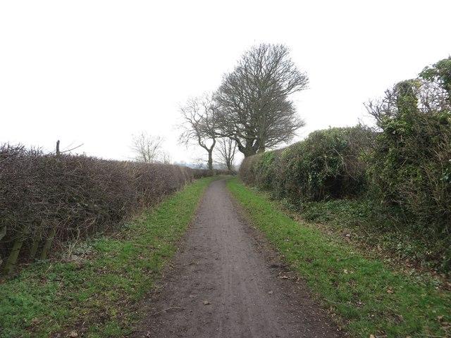 Bridleway between Dinnington and Seaton Burn