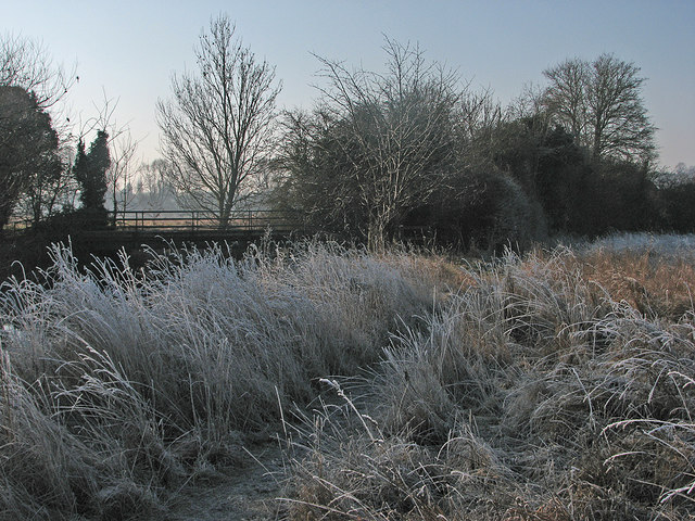Haslingfield: a frosty spot by the Cam