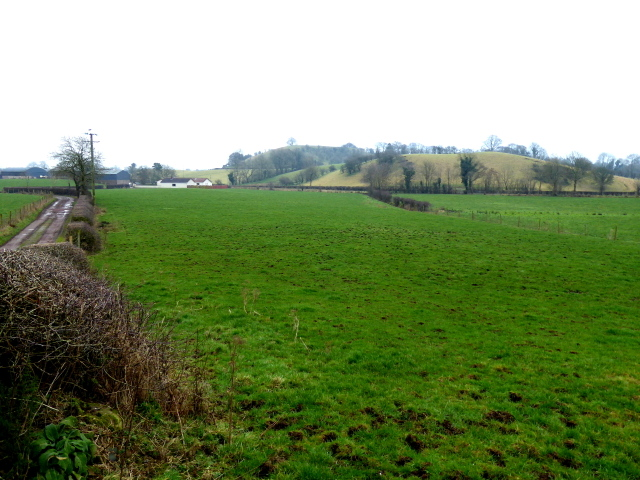 Laragh Townland