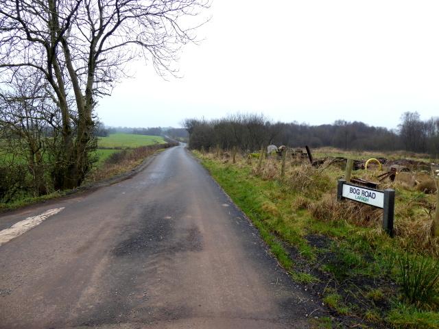 Bog Road, Laragh