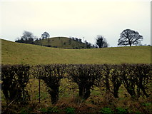 H5366 : Curving slopes, Beragh by Kenneth  Allen