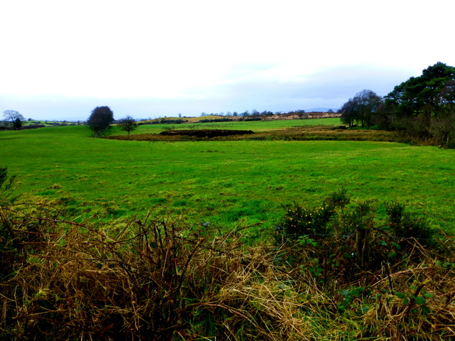 Mullaghslin Glebe Townland