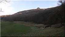 NZ5712 : Newton Wood and Roseberry Topping by Anthony Foster