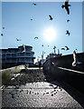 TR1768 : Landing Stage, Central Parade, Herne Bay by Matt Harrop